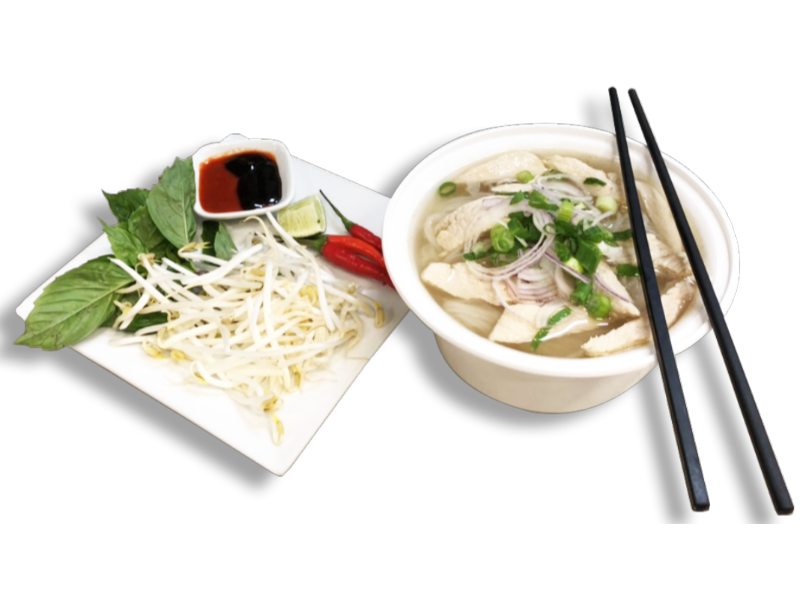 PHO - Chicken Noodle Soup